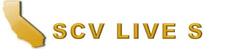 Scv Live Scan & Notary